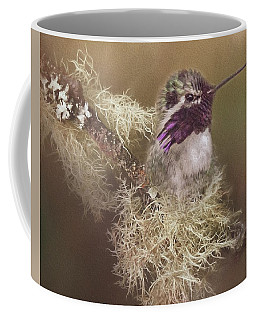 Costas Hummingbird Painted Coffee Mug