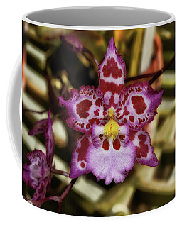 Cotton Candy Orchid 004 Coffee Mug by George Bostian