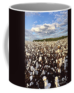 Cotton Field In South Carolina Coffee Mug