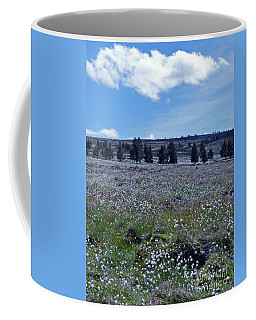 Coffee Mug featuring the photograph Cotton Grass Moor by Phil Banks