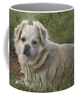 Cotton In The Grass Coffee Mug
