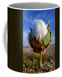 Coffee Mug featuring the photograph Cotton Pickin' by Skip Hunt