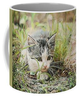 Cotton The Kitten Coffee Mug