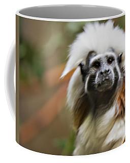 Cotton-top Tamarin _ 1a Coffee Mug