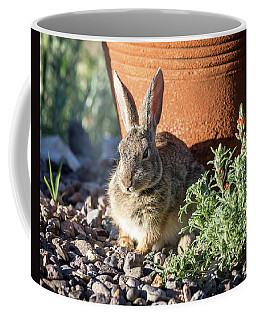 Cottontail Rabbit In The Garden Coffee Mug