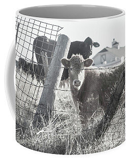 Country Living For These Cows Coffee Mug by Toni Hopper