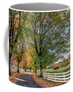 Country Road In Rural Maryland During Autumn Coffee Mug