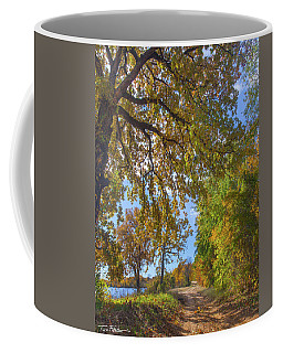 Country Road Coffee Mug by Tim Fitzharris
