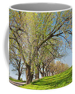 Country Spring Coffee Mug by Alan L Graham