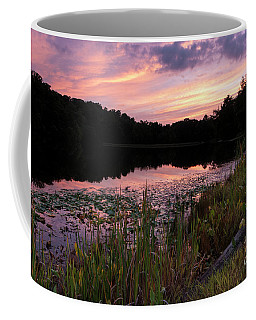 Country Sunset - D010173 Coffee Mug