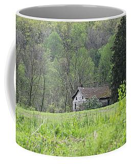 Countryside Coffee Mug by Donald C Morgan