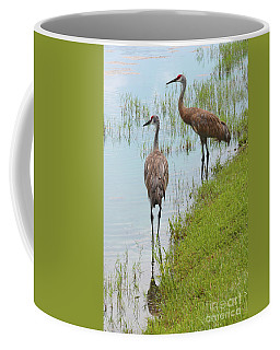 Couple Of Sandhills By Pond Coffee Mug