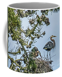 Courting Herons 2 Coffee Mug by Kate Brown