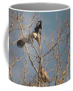 Coffee Mug featuring the photograph Courtship Ritual Of The Great Blue Heron by David Bearden