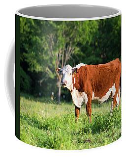 Cow #1 Coffee Mug