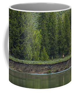 Cow Elk On The Riverbank Coffee Mug