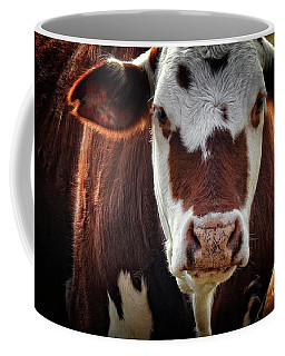 Cow Face Portrait - At The Ranch Coffee Mug