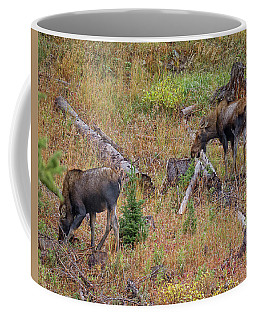 Cow Moose Browsing Coffee Mug