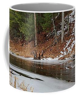 Cow Pond Brook Massachusetts Coffee Mug by Mary Bedy