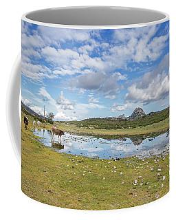 Reflected Cows  Coffee Mug