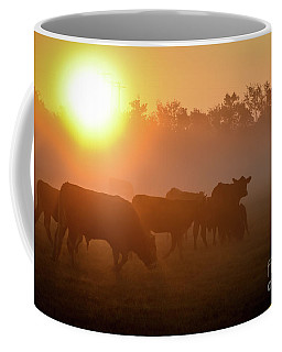Cows In The Sunrise Mist Coffee Mug