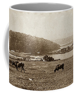 Coffee Mug featuring the photograph Cows On Baker Field by Cole Thompson