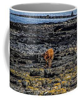 Cows On The Rocks Coffee Mug