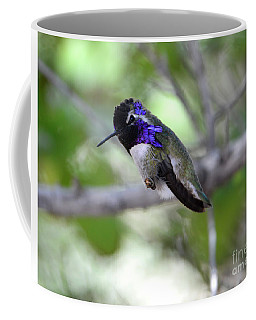 Coy Costa's Hummingbird Coffee Mug