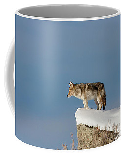 Coyote At Overlook Coffee Mug