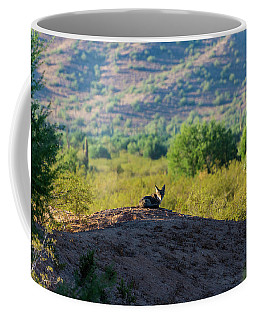Coyote Hill Coffee Mug