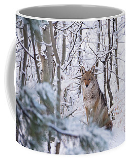 Coyote In The Aspens Coffee Mug