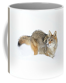 Coyote In White Coffee Mug by Steve McKinzie