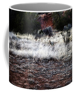 Coffee Mug featuring the photograph Coyote by Joseph Frank Baraba