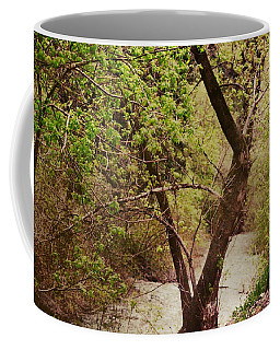 Cozy Stream In American Fork Canyon Utah Coffee Mug