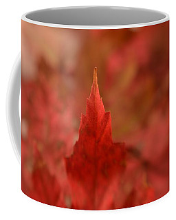 Coffee Mug featuring the photograph Cozying Up To The Autumn Maple 3 by Diane Alexander