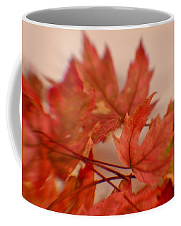 Coffee Mug featuring the photograph Cozying Up To The Autumn Maple 5 by Diane Alexander