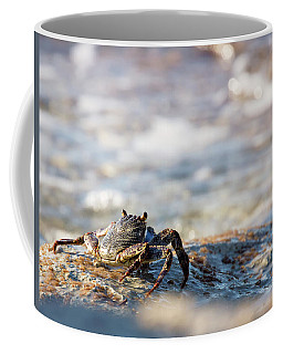 Crab Looking For Food Coffee Mug