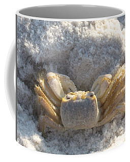 Coffee Mug featuring the photograph Crab On The Beach by Christiane Schulze Art And Photography