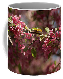 Crabapple In Spring Section 3 Of 4 Coffee Mug