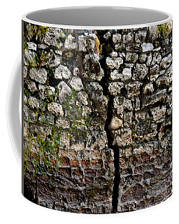 Crack In The Wall Coffee Mug