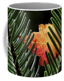 Cradled Coffee Mug