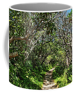 Craggy Gardens Walkway Coffee Mug