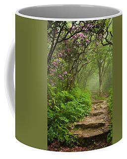 Craggy Steps Coffee Mug