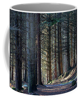 Craig Dunain - Forest In Winter Light Coffee Mug
