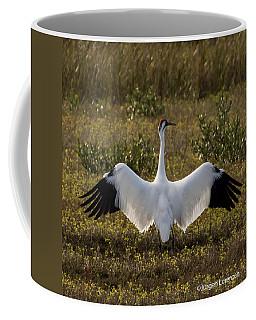 Crane Dance Coffee Mug