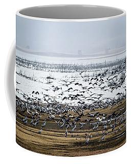 Coffee Mug featuring the photograph Crane Dance by Torbjorn Swenelius