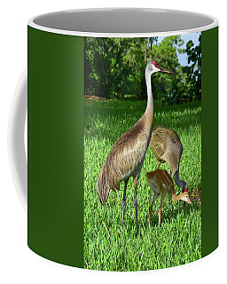 Crane Family Picnic Coffee Mug