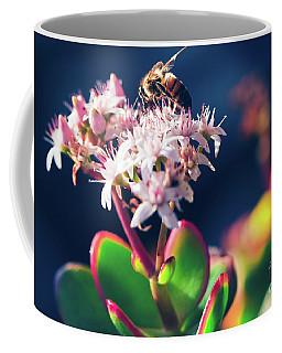 Coffee Mug featuring the photograph Crassula Ovata Flowers And Honey Bee by Sharon Mau