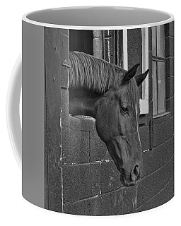 Crazy For Horses Coffee Mug
