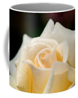 Cream Rose Kisses Coffee Mug